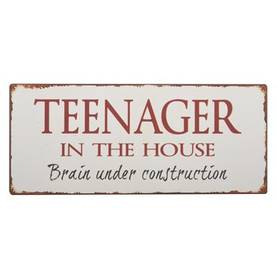 "IbLaursen Metallikyltti ""Teenager in the house"" - Taulut ja kyltit - 5709898218133 - 1"